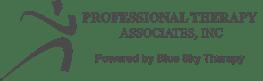 PT Associates - Blue